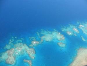 Joshua_Drew_Fiji_coral_reef002