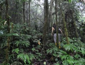 Claudia_Santori_Discover_Conservation12