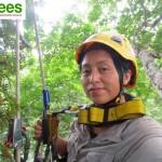 21 - Tree top Manu 2015